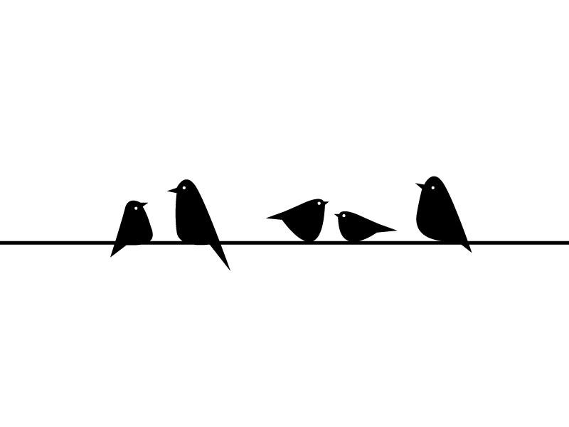 Birds_in_line