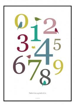 Plakat med grafisk opsatte tal og fugle