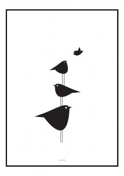 Plakat med stablede fugle af grafisk designer Tine Faurholdt
